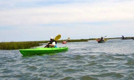Kayak Rental In Newport
