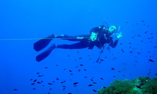 Diving Excursions & Pad Courses In Pulpí