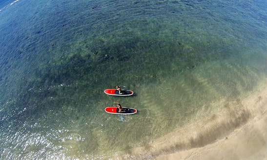 Stand Up Paddleboard Lessons In Kahului