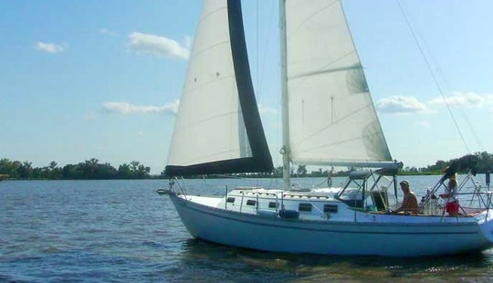 32' Sailing Yacht Charter In Clontarf
