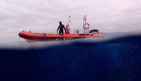 Valiant 750 Rib Diving Trips & Padi Courses In Mataró