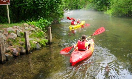 Single Kayak Rental In Pleasant Plains Township