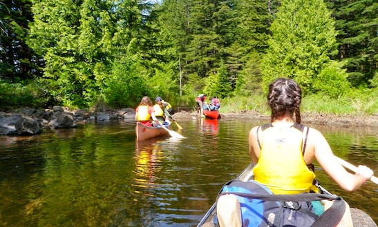 Guided Canoeing Tours In Cowichan Valley D