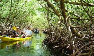 Kayak Rental in Mud Hole