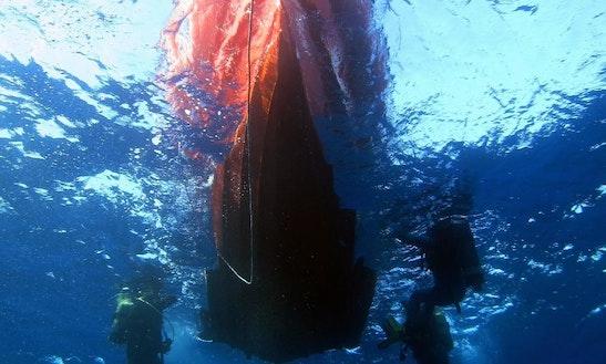 Diving Trips In Chloraka, Cyprus