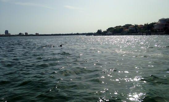 Kayak For Rent In Tampa