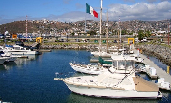 Ensenada Coastal Pacific Tour In San Diego