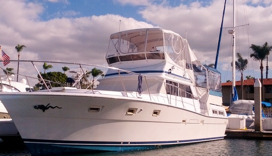 Captained Charter On 43' Viking Aft Cabin Motor Yacht In San Diego