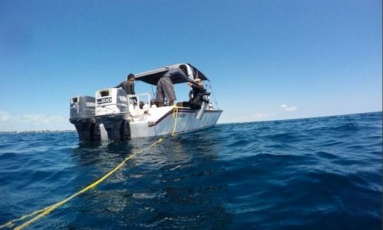 Scuba Diving In San Pedro