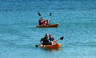 Kayak Safari Tour In Falmouth