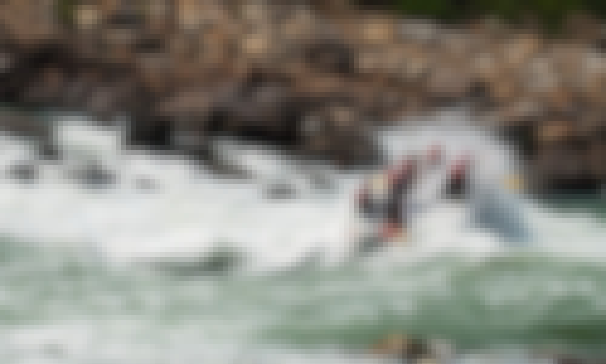 5-Hours White Water Rafting Trip on Rishikesh Rivers in India