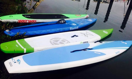 Stand Up Paddleboard Rental In Sausalito