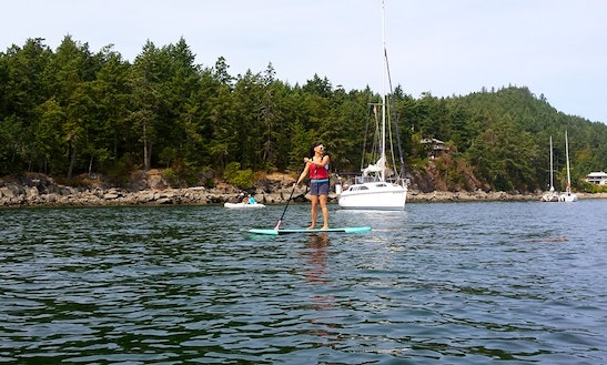 Stand Up Paddleboard Rental On Pender Island