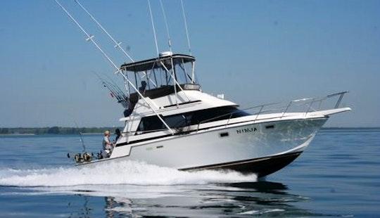 34' Sport Fisherman Fishing Charter In Waukegan,  Illinois