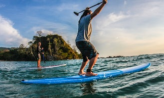 Stand Up Paddleboard Tour/Lesson In Santa Teresa