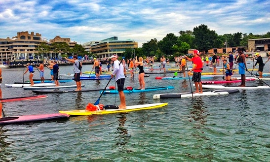 Stand Up Paddleboard Lesson In Annapolis