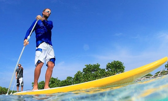 Sup Lesson And Paddleboard Rental In Harnett