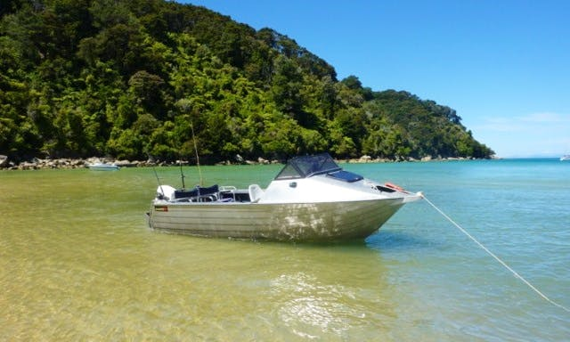 Cuddy Cabin Fishing Trips in Christchurch