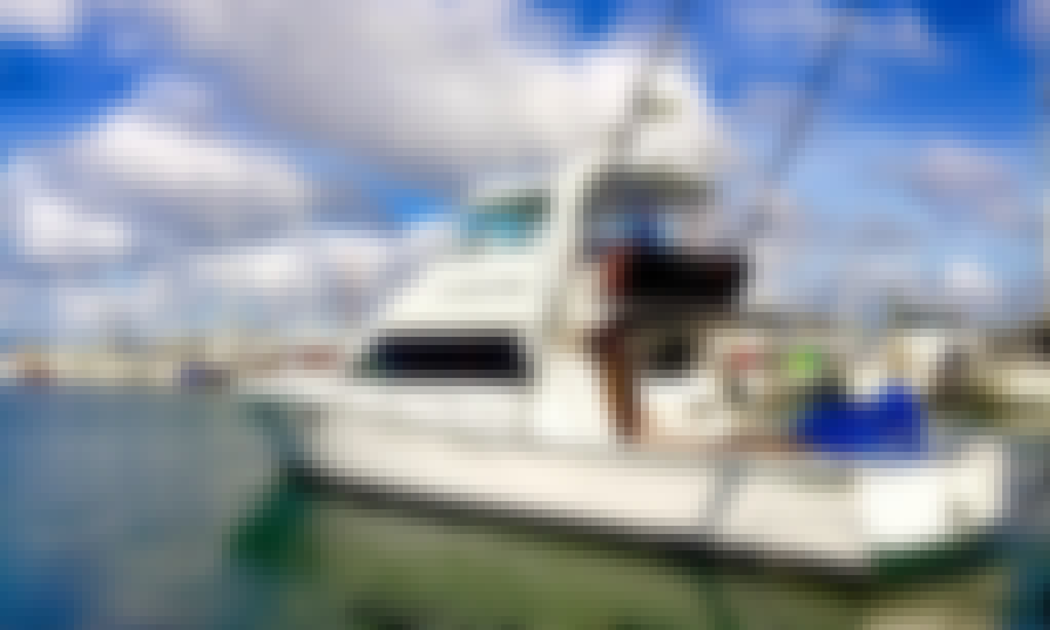 Auckland Fishing Charter on 'Gladiator' Yacht