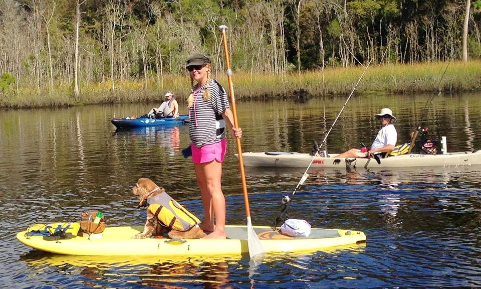 Stand Up Paddleboard In Jacksonville
