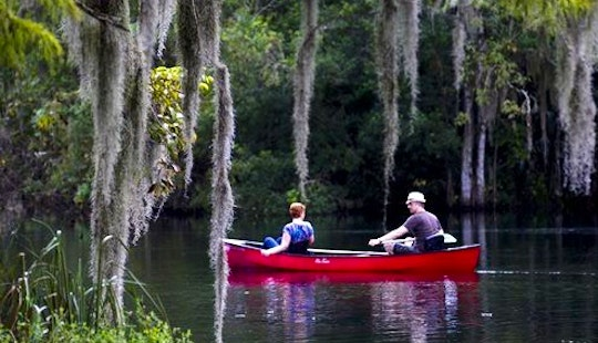 Guided Canoe Excursions And Rental In Silver Springs, Florida