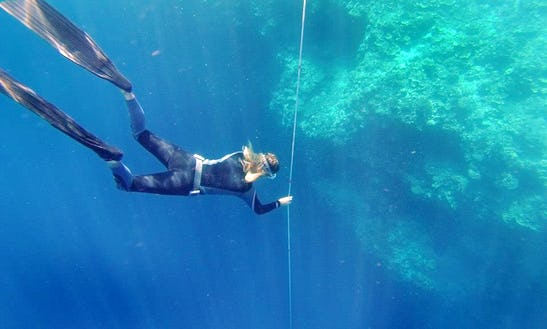 Freediving Excursions And Lessons