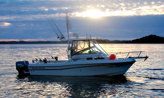 Grady White 232 Cuddy Cabin Fishing Trips in Prince Rupert, Canada