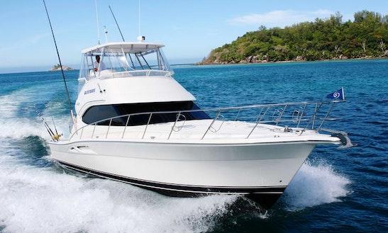 Blue Belle/ Wave Charter In Seychellas