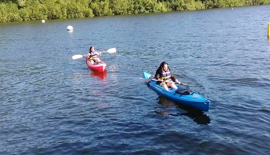 Discover The Beautiful Views Of North Fort Myers, Florida On A Single Kayak