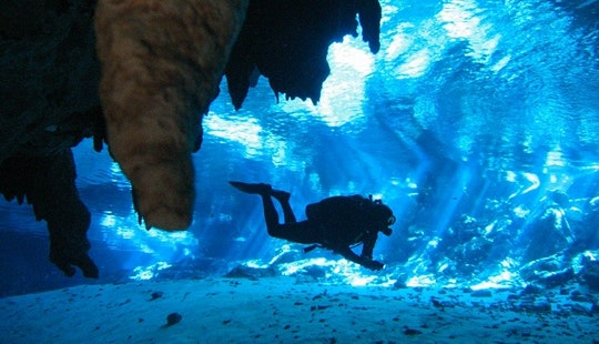 Open Sea & Cave Diving Trips In Quintana Roo