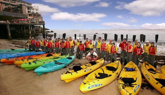 Kayak Rental In Sandgate