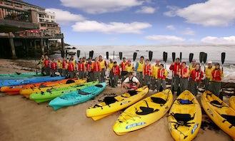 Kayak Rental in Sandgate. Queensland