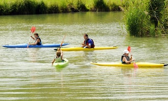 Fantastic Kayak Rental & Trips in Selestat, France