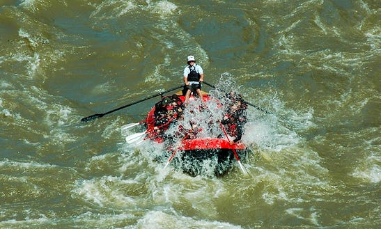White Water Rafting & Scenic Float Trips In Jackson