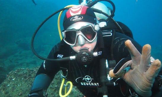 Scuba Diving In Galápagos Island