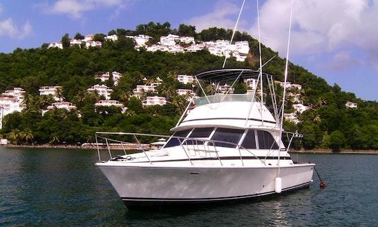 35' Sportfishing Yacht Charter In Saint Lucia