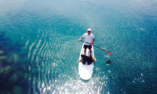 Learn To Stand Up Paddle In Kingscliff