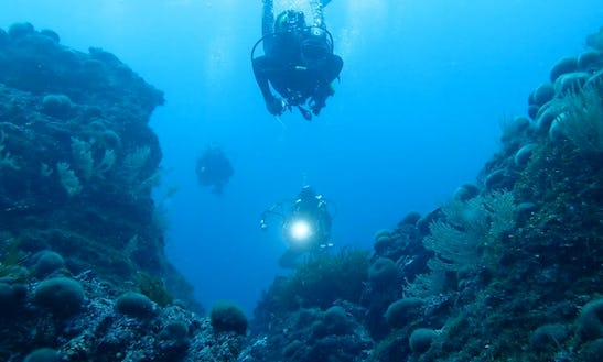 Explore The Beautiful Oceans Of Hyeres, France In Diving Sessions