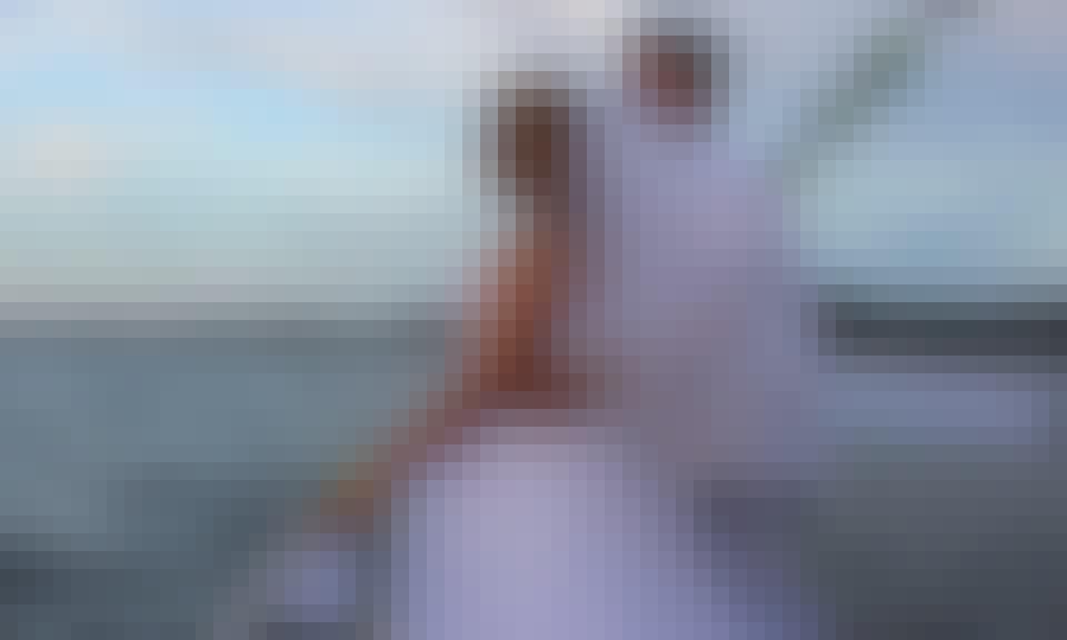 Passenger Boat Trips in Port Macquarie, Australia