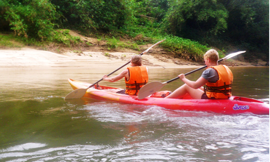 Kayak  In  Rainforest River Sunai Borneo