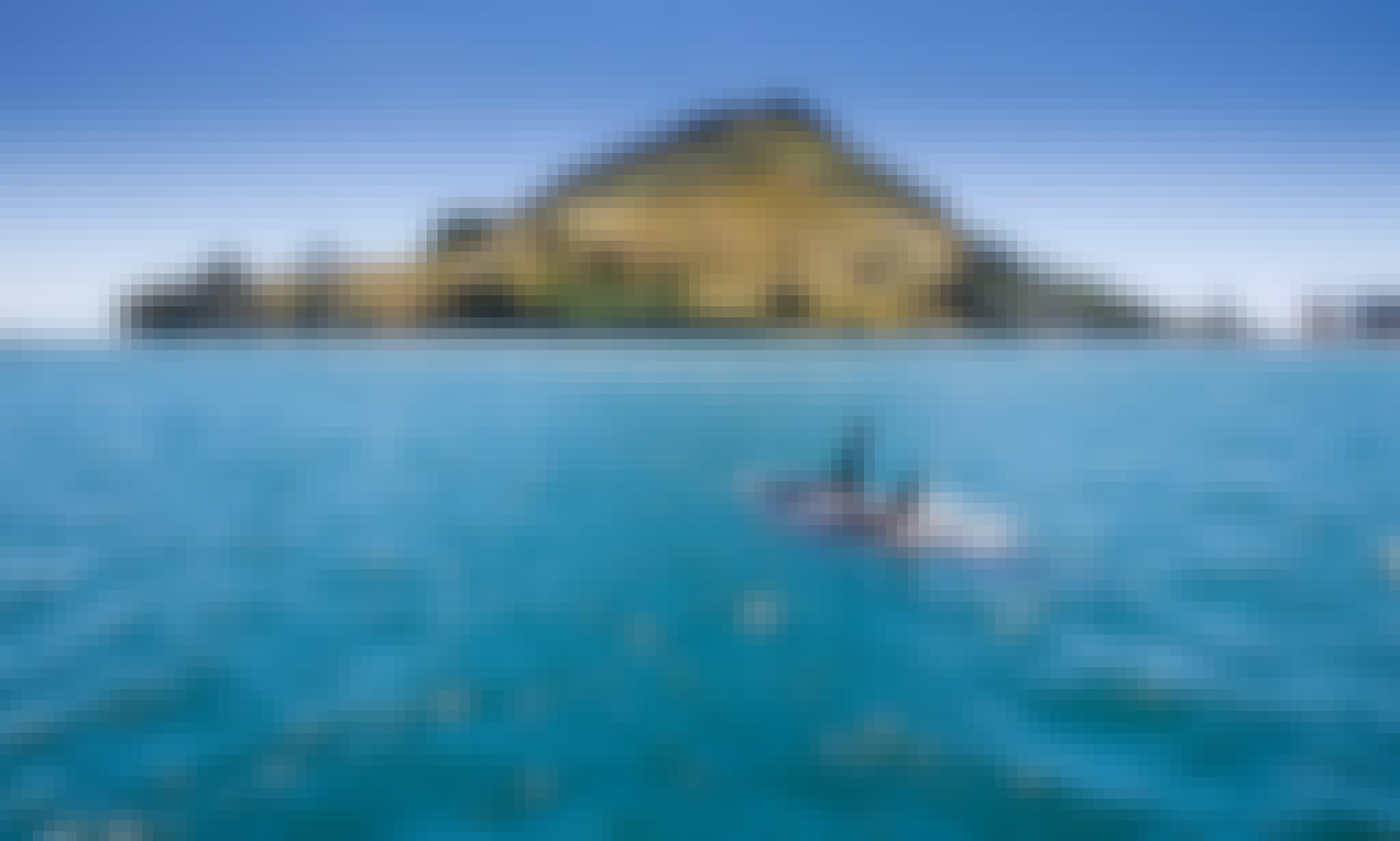 'Bay Explorer' Boat Scenic & Corporate Cruises in Tauranga