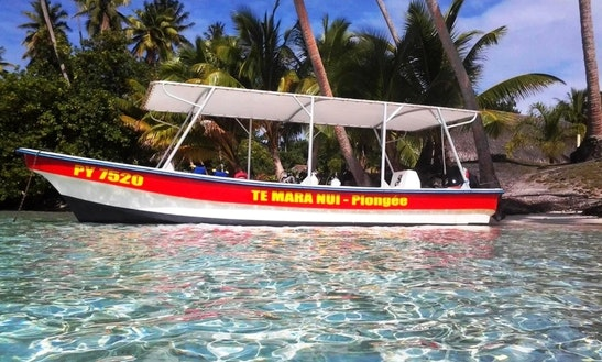 Diving Trip To Raiatea Lagoon -tahaa