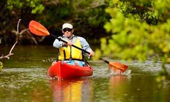 Single Kayak Rental In Barnegat Light