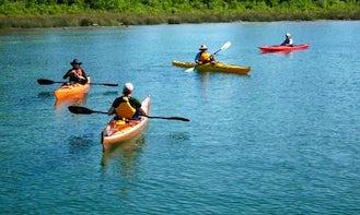 Canoe Rental in Wenzendorf, Germany