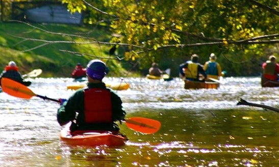 Kayak Rental On Southern Wolf River