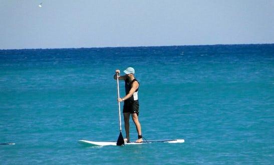 Paddleboard Rental In Juno Beach, Florida