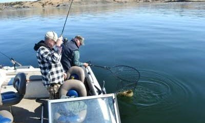 Guided Fishing Trips In West Hughes
