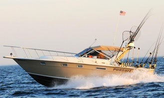 31ft Duster Cuddy Cabin Fishing Charter in Arcadia Township, Michigan