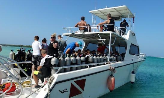 Scuba Diving Trips In Oranjestad, Aruba