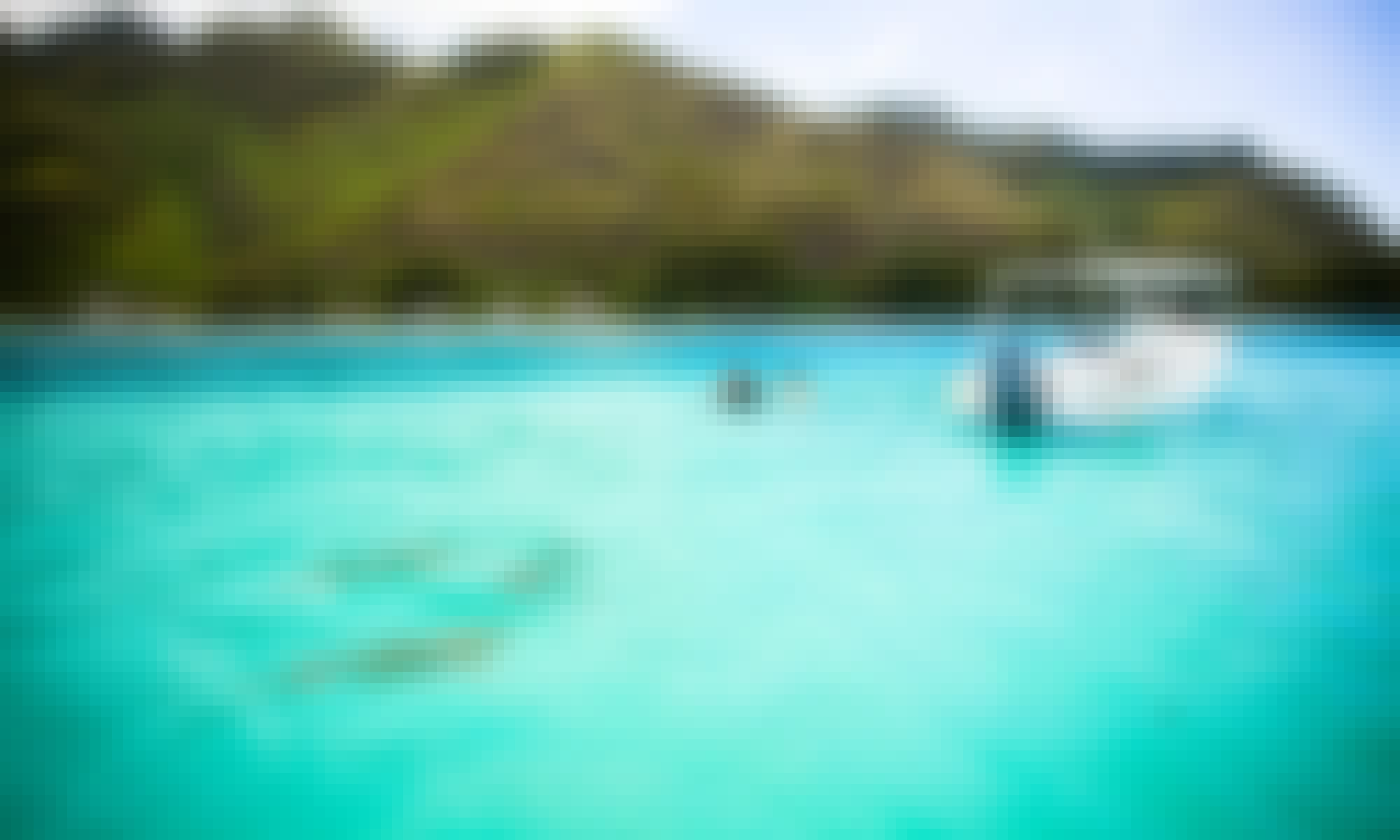 Boat Ocean Wildlife Tours in French Polynesia